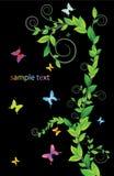 Cartão floral com borboletas Fotos de Stock