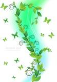 Cartão floral com borboletas Fotografia de Stock Royalty Free