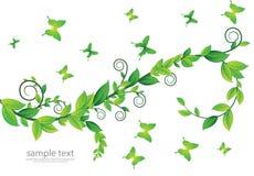 Cartão floral com borboletas Fotos de Stock Royalty Free