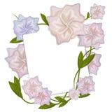 Cartão floral com flor ilustração stock