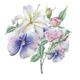 Cartão floral com flores lilia pansies Rosa Ilustração da aguarela Fotografia de Stock Royalty Free