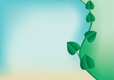 Cartão floral com fundo distorcido Fotografia de Stock Royalty Free