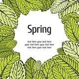 Cartão floral da folha da mola Imagens de Stock Royalty Free