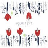 Cartão floral das tulipas Fotografia de Stock Royalty Free