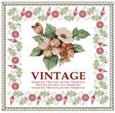 Cartão. Flores. Quadro bonito. Fotografia de Stock Royalty Free