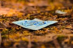 Cartão na terra imagens de stock