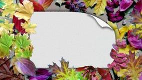 Cartão na textura das folhas de outono foto de stock royalty free