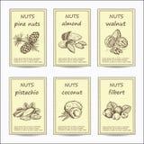 Cartão Nuts da venda ilustração stock
