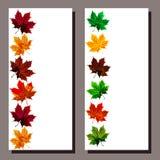 Cartão original com as folhas de outono no estilo étnico Foto de Stock