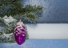 Cartão para o ano novo ou o Natal Fotos de Stock