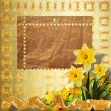 Cartão para o convite com o ramalhete do narciso das flores Foto de Stock