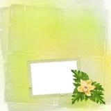 Cartão para o convite com orquídeas e galhos Foto de Stock