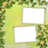Cartão para o convite com orquídeas e galhos Foto de Stock Royalty Free