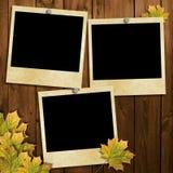 Cartão para o feriado com folhas de outono Fotografia de Stock