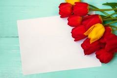Cartão para a Páscoa, o 8 de março, dia de mães Fotografia de Stock