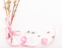 Cartão para uma palma domingo: os ramos do salgueiro que são amarrados acima perto Imagem de Stock