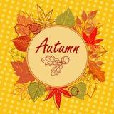 Cartão quadrado do outono Fotos de Stock Royalty Free