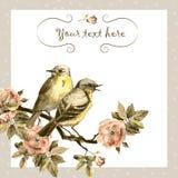 Cartão retro na cor marrom do sepia com pássaros do vintage, rosas da flor foto de stock royalty free