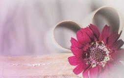 Cartão retro romântico Fotografia de Stock