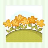 Cartão simples com flores alaranjadas fotografia de stock royalty free