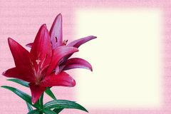 Cartão (simulação da pintura de óleo) Imagem de Stock Royalty Free