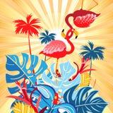 Cartão tropical brilhante do flamingo Imagens de Stock Royalty Free