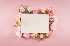 Cartão vazio e flores de florescência bonitas no rosa Fotos de Stock