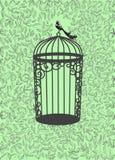 Cartão verde Fotografia de Stock