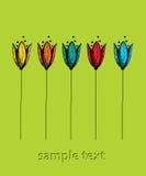 Cartão verde da tulipa Fotos de Stock