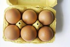 Cartón de huevos con seis huevos Imagen de archivo