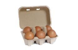 Cartón de huevos con seis huevos marrones Imagen de archivo libre de regalías