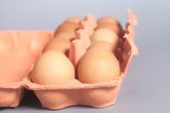 Cartón de huevos de la cartulina con los huevos marrones en gris Imagenes de archivo