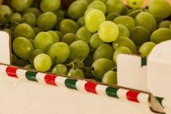 Cartón de las uvas blancas Imagen de archivo