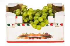 Cartón de las uvas blancas en el fondo blanco Fotos de archivo libres de regalías