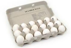 Cartón de los huevos Imágenes de archivo libres de regalías