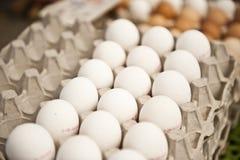 Cartón de los huevos blancos Imagenes de archivo
