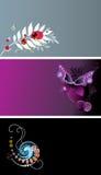 Cartões ajustados Ilustração do Vetor