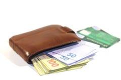 Cartões do dinheiro e de crédito Imagens de Stock Royalty Free