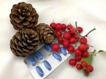 Cartões de Natal médicos Fotografia de Stock Royalty Free