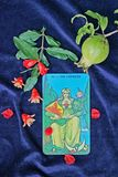 Cartões de Tarot Imagens de Stock