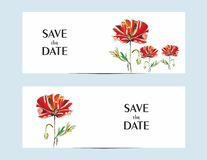 Cartões do convite com uma papoila vermelha para seu projeto ilustração do vetor