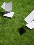 Cartões em branco que caem no gramado Fotografia de Stock Royalty Free
