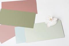 Cartões vazios com a flor no branco Imagens de Stock Royalty Free