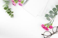 Cartões, vidros e pena brancos vazios Fotografia de Stock Royalty Free