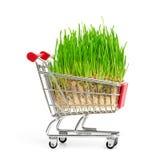 cart покупка Стоковое Изображение