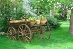 cart Obrazy Stock