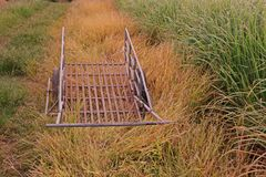 Cart for carrying produce from farm. Farmer equipment Royalty Free Stock Photo