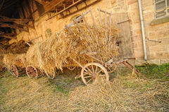 Cart with clippings grass Royalty Free Stock Image