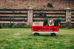 Cart containing the Christmas tree. That has chosen to take home for decorates for the holiday season Stock Images