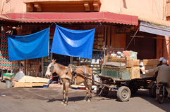 A cart with a donkey, unloading of goods Stock Images